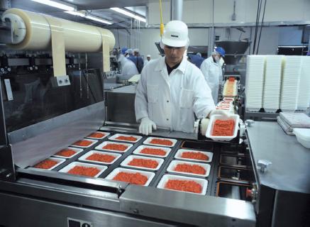 aplicaciones de los hongos en la industria alimentaria