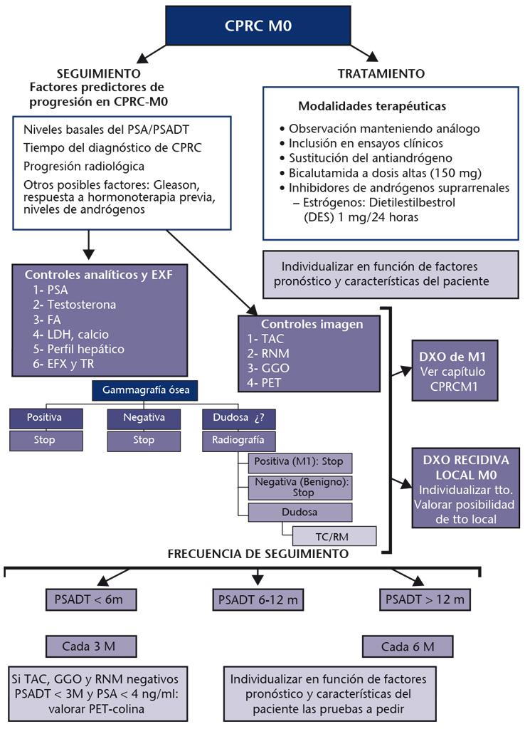 predicciones del pronóstico del cáncer de próstata 54