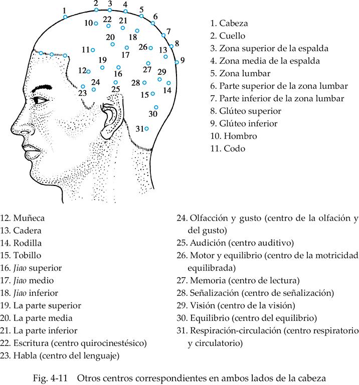 Puntos de acupuntura en la espalda